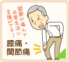 松山市・砥部町すこやか整骨院の膝痛・関節痛のページはこちら