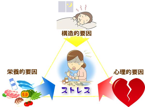 松山市・砥部町すこやか整骨院松山砥部院:ストレスの要因の図